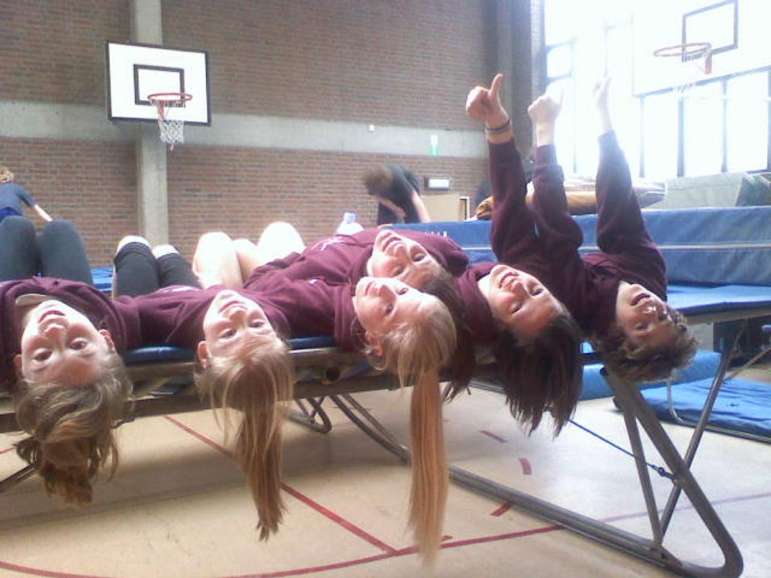 trampoline springers